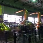 日本のウイスキーのふるさと「サントリー山崎蒸留所」でオークの樽を見てきました!